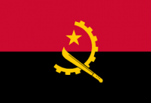Angola Assembly backs PPP law
